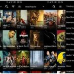 download movies from Cat Mouse