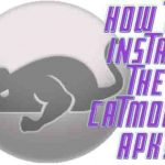 install CatMouse APK