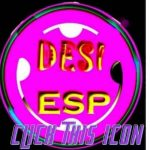 install and use the DESI ESP App file
